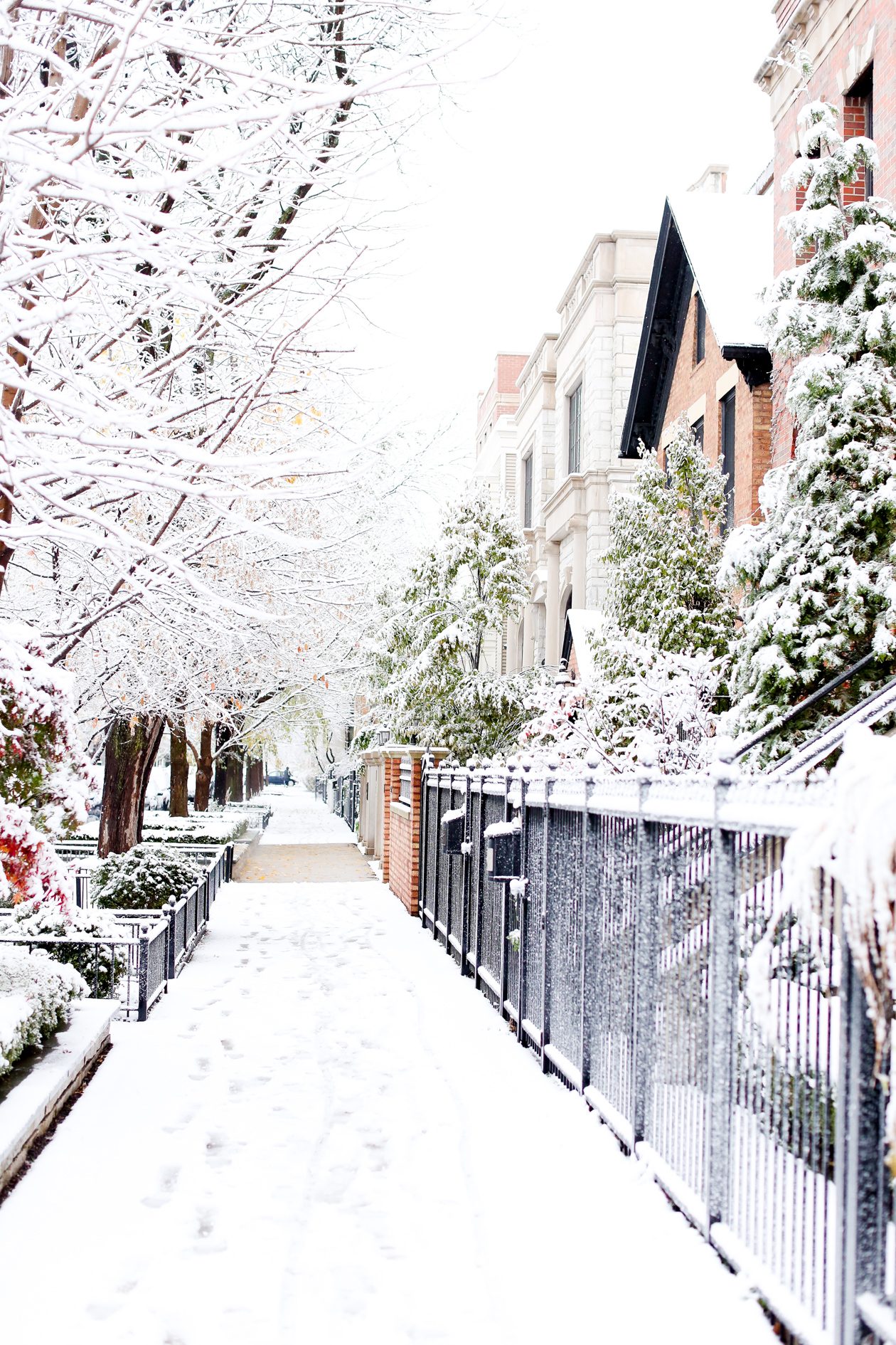 Things To Do In Chicago This Winter 183 Blog App 233 Tit